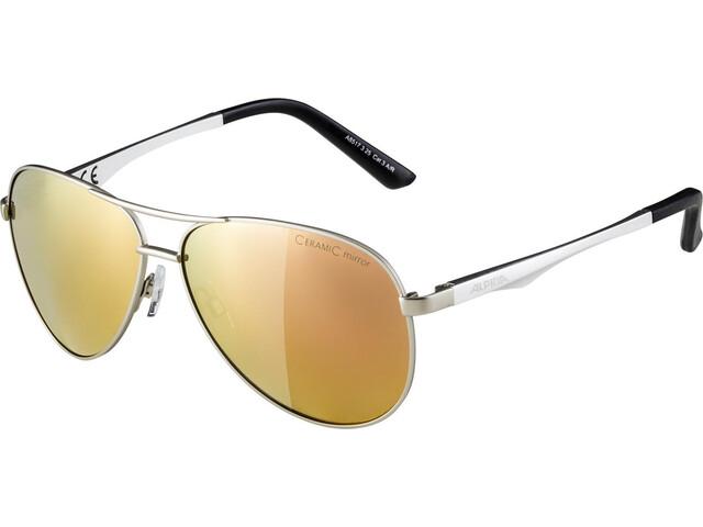 Alpina A 107 Cykelbriller sølv (2019) | Briller
